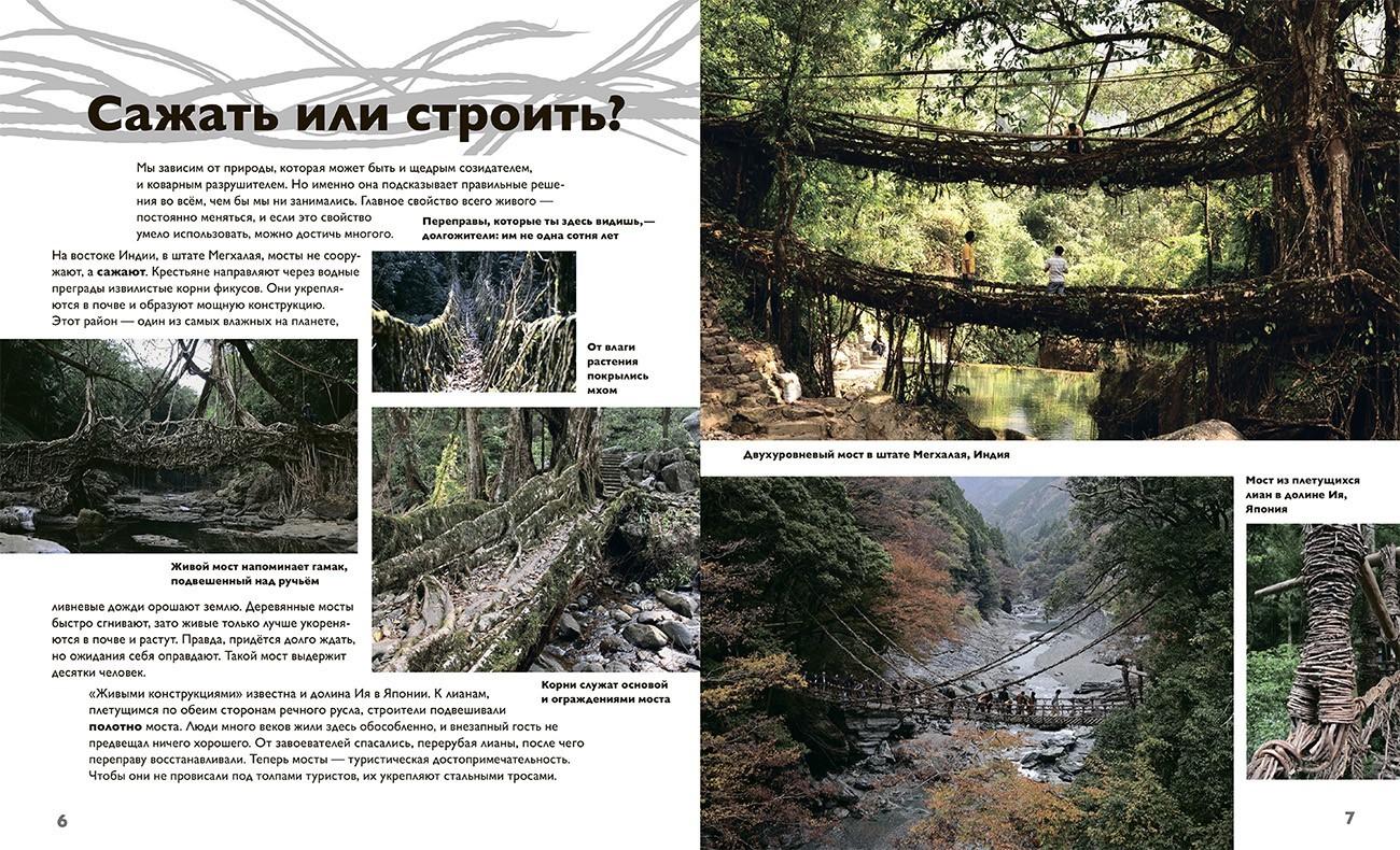 detyam-mosty-2